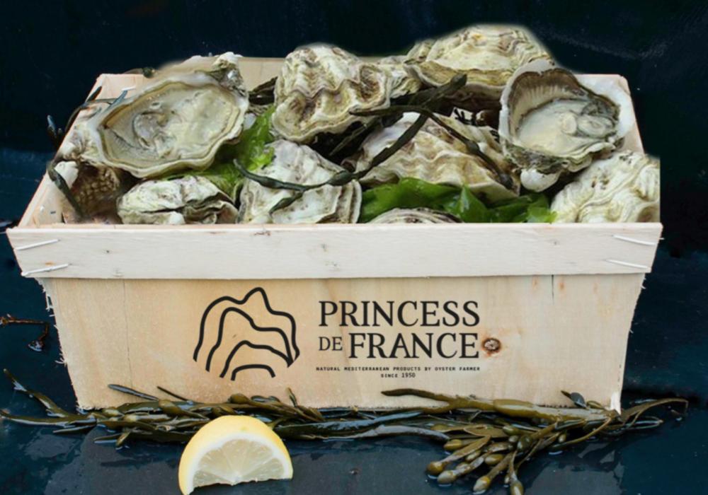 princess-de-france
